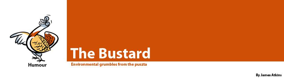 The Bustard